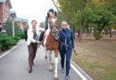 Иппотерапия — особый вид лечения с помощью лошади